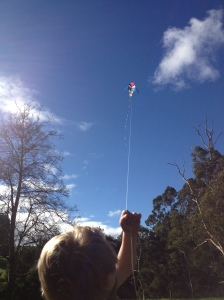 kite high above trees