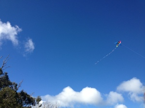 kite in clouds