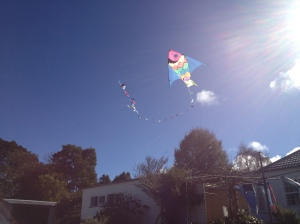 kite in the sun